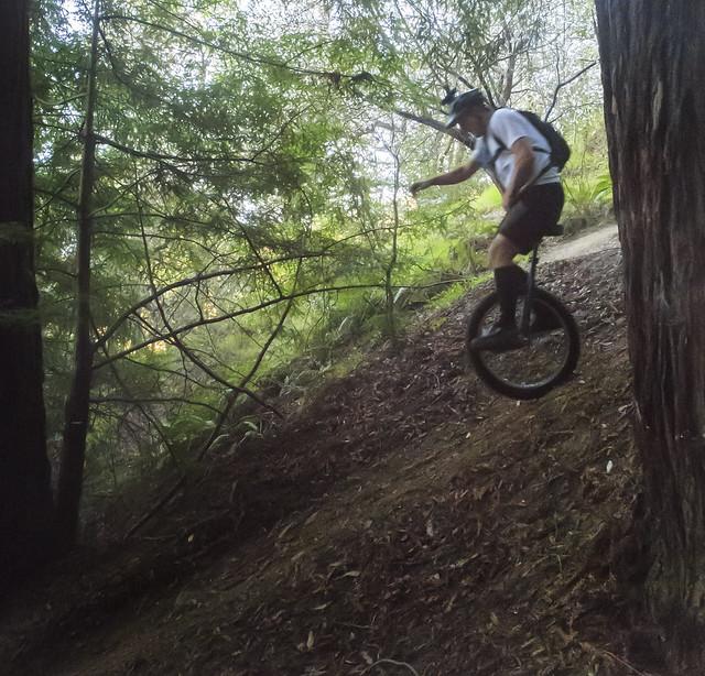 Ricardo in the chute