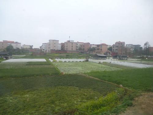 Hainan 13-Guangzhou-Haikou-Train (12)