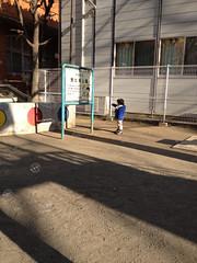 朝の散歩 2013/2/26