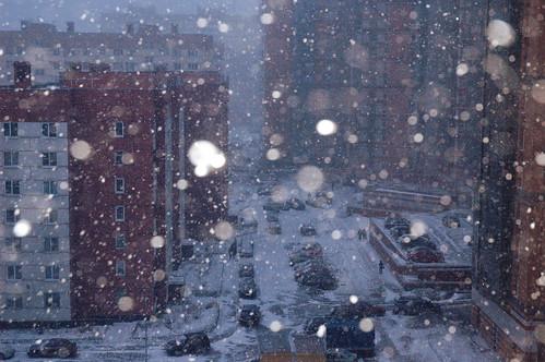 20130308.snowstorm_in_St.Petersburg.Russia.DSC_0852.m