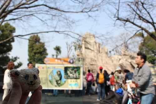 パンダおにぎりセット_上野動物園