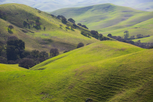 california nature landscape outdoors