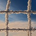 Web shots-Winter2013_025 by ajschroetlin