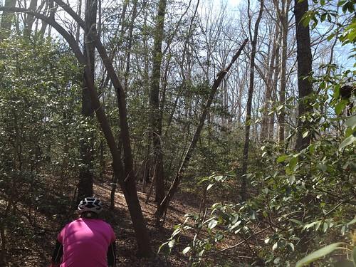 Biking York River March 10, 2013 (54)