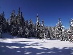 木, 2013-02-28 10:04 - Alta Lakes へ
