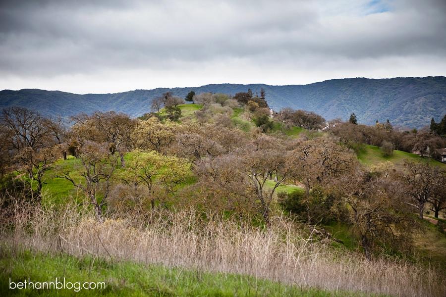 guadalupe oak grove park san jose ca
