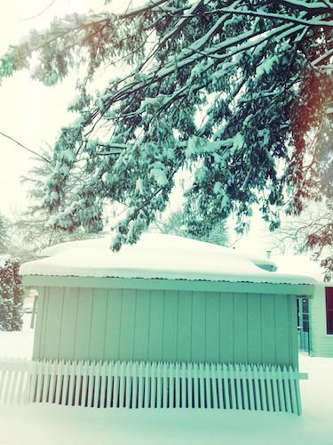 MN Winter 2013