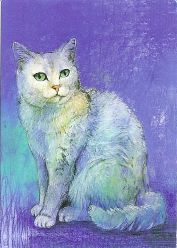 White Cat by Loes Botman