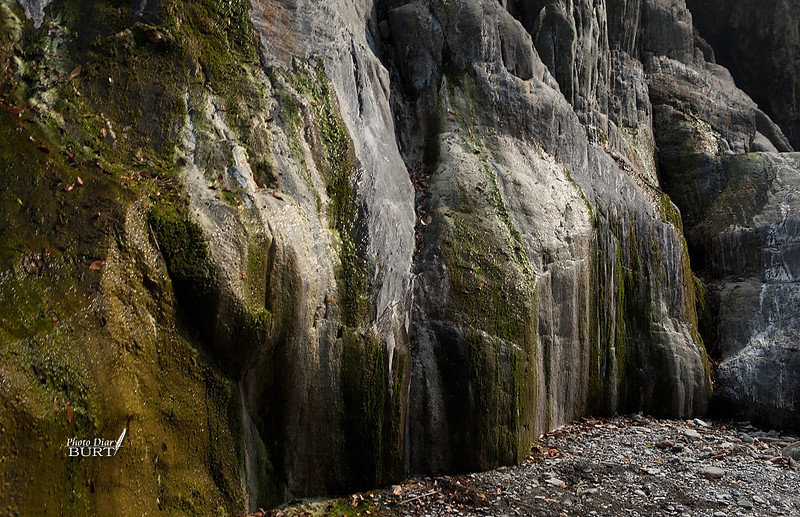 哈尤溪溫泉 (19)