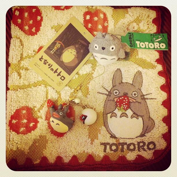 Oh Totoro, why r u so cute? #tokyo #totooro #ghibuli #ichigonewjourney