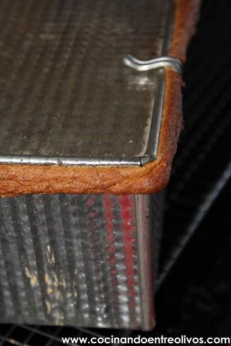 Pan de molde integral www.cocinandoentreolivos.com (26)