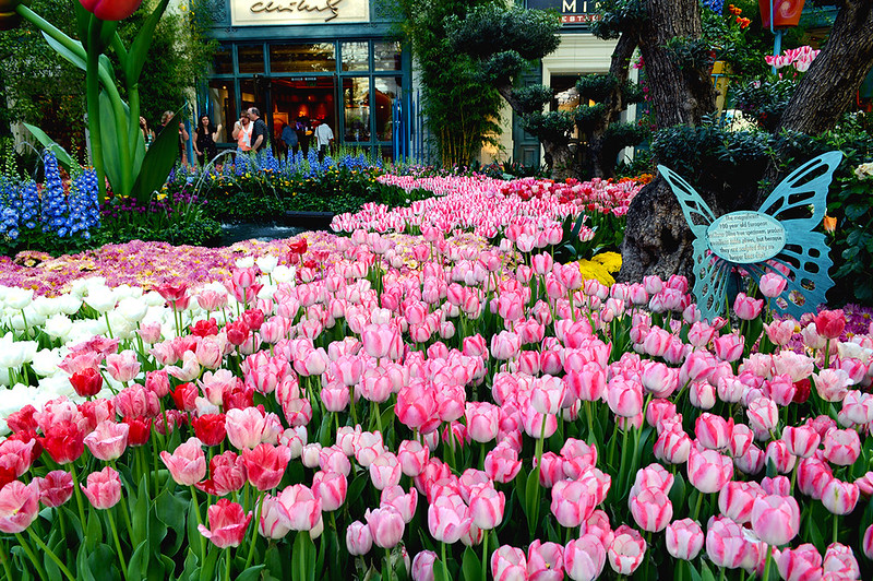 Bellagio Lobby Garden