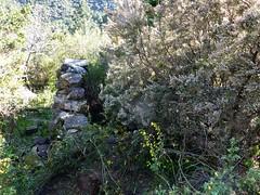 Vestiges des anciennes bergeries de Mela
