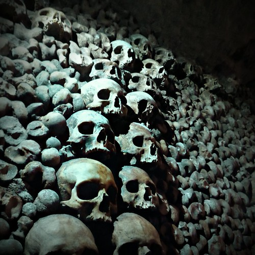 A wall of bones and skulls