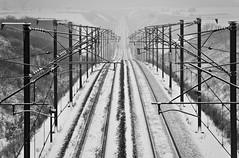Voie ferrée - Ligne LGV Est