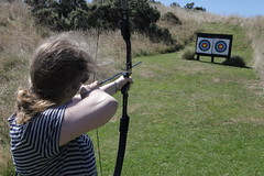 archery, weapon, shooting, sports, recreation, outdoor recreation, target archery, bow and arrow,