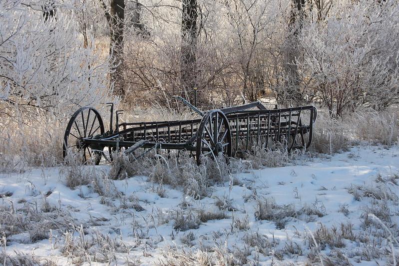 Frosty Morning 8491930643_0c22e33aba_c