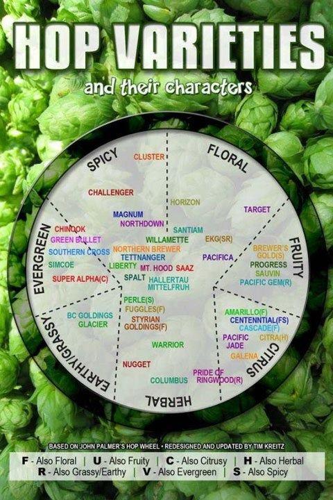 hop-varieties