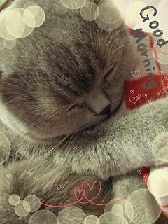 sleepy ♥