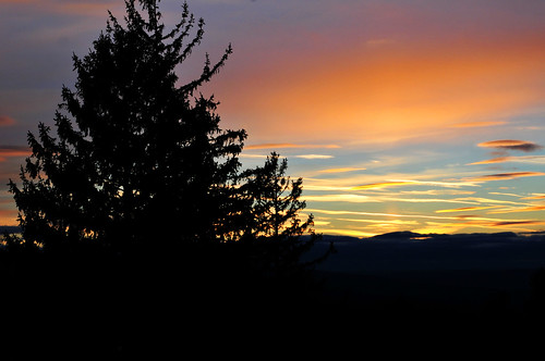 sunset mountains tree pine 50mm nikon catskills d300