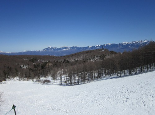 お花畑と八ヶ岳連峰 2013年3月12日11:03 by Poran111