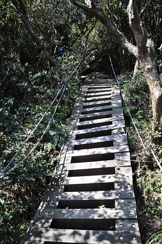 獅仔頭山隘勇線登山步道-崖梯