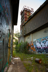 Back Alley Grotto
