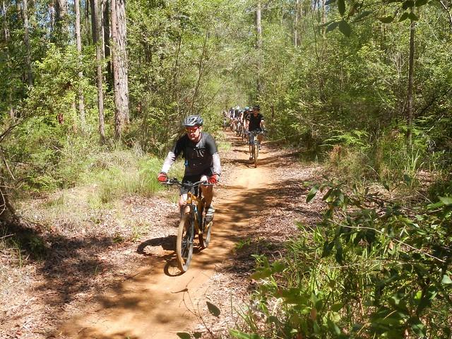 Woodford Trails