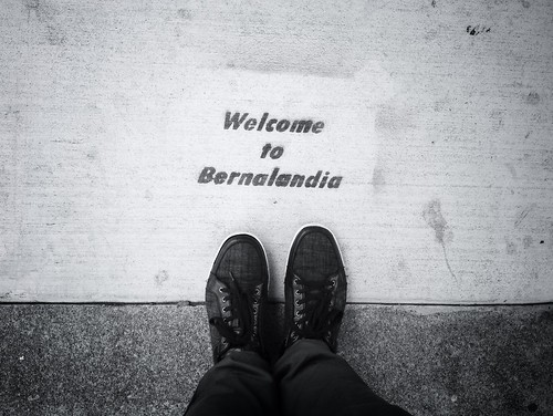 Welcome to #Bernalandia aka #bernalwood