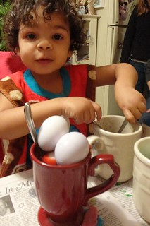 how many eggs can you fit in a cup