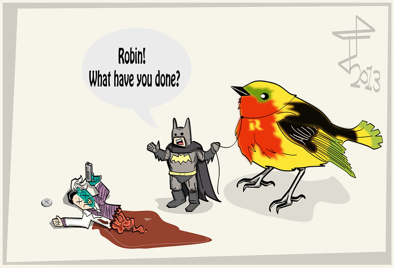robin and the bat
