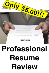 Professional Resume Review 041413