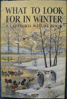 A Ladybird Nature Book: What to look for in Winter
