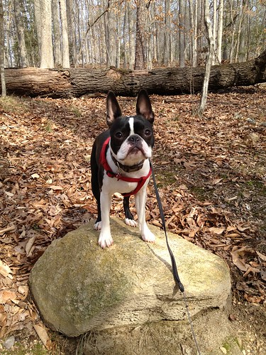 Charlie's First Trip to Poco Feb 2013 (47)