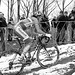 2013 UCI World Cyclocross Championships