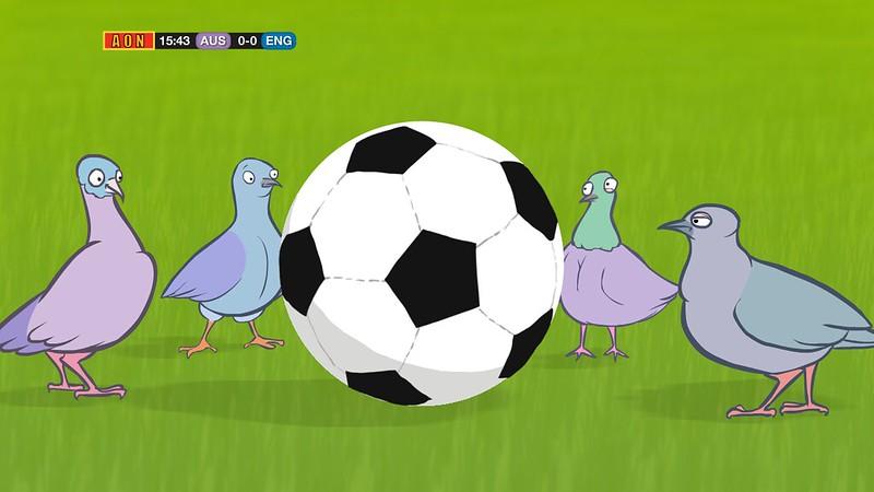 Sport_Pigeons_Colour