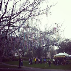 Bead Tree Bonanza! Tulane students donate beads to ARC for reuse next year! #onlyattulane