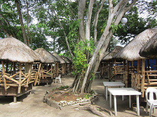 TREE AND HUTS