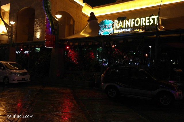 rain forest (1)