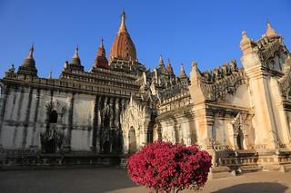 Image of  Ananda Pahto Temple  near  Pagan. myanmar bagan