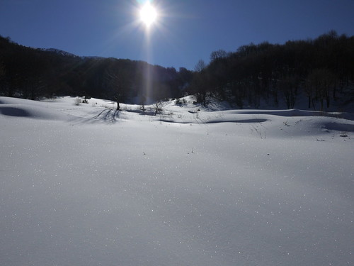 lovely snow landscape in the sun