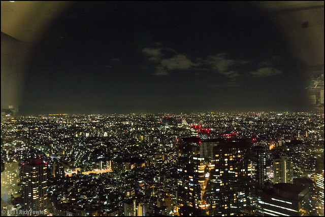 The view from the Tokyo Metropolitan Building