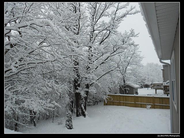 2013-02-28-DSCN2246