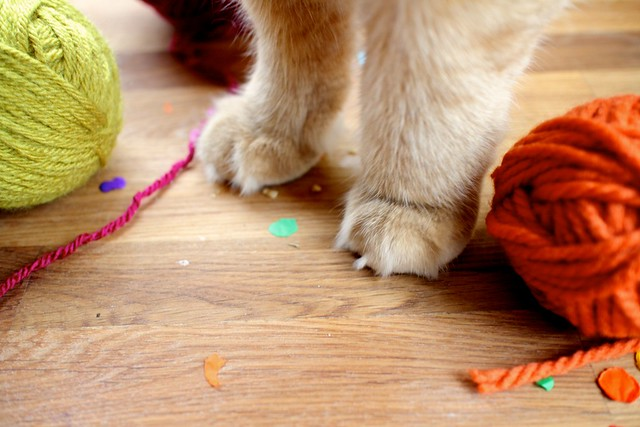 Yarn Ball Catnip Toys | joy the baker