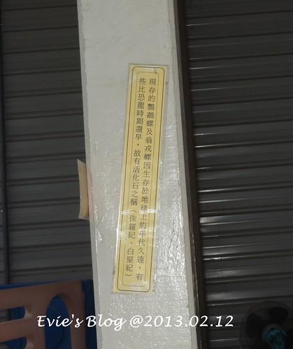 DSC05544