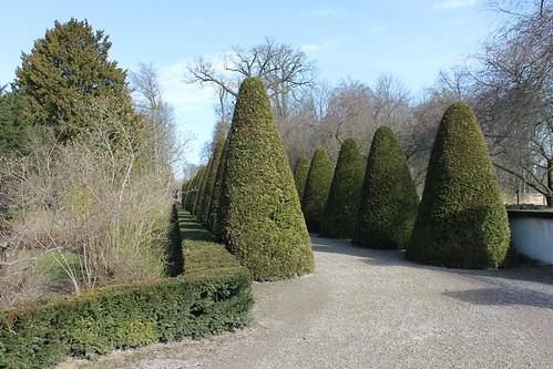 2013.03.09.107 - SCHWETZINGEN - Schwetzinger Schlossgarten
