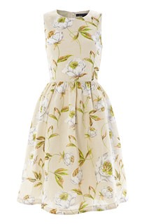 Spring-Bloom-Flared-Dress