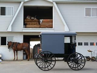 Carruaje amish aparcado frente a una casa