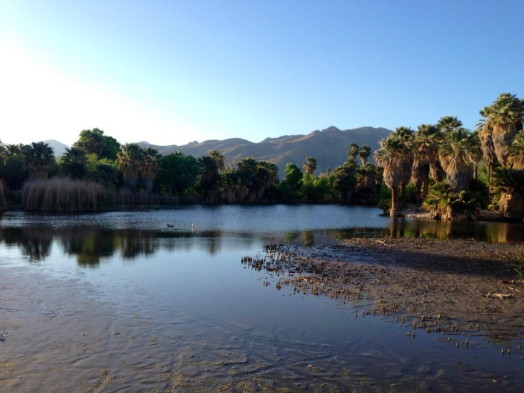 Oáza Agua Caliente, Arizona