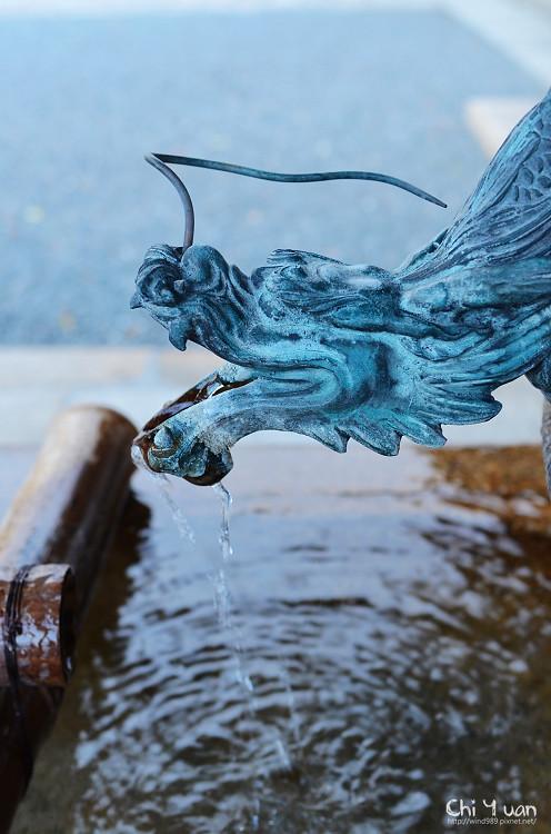 [日本。京都]本山興正寺。涓涓清泉,龍型水手舍
